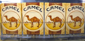 dbpix-camel-tmagArticle