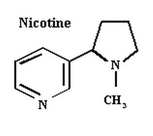 nicotine_structure